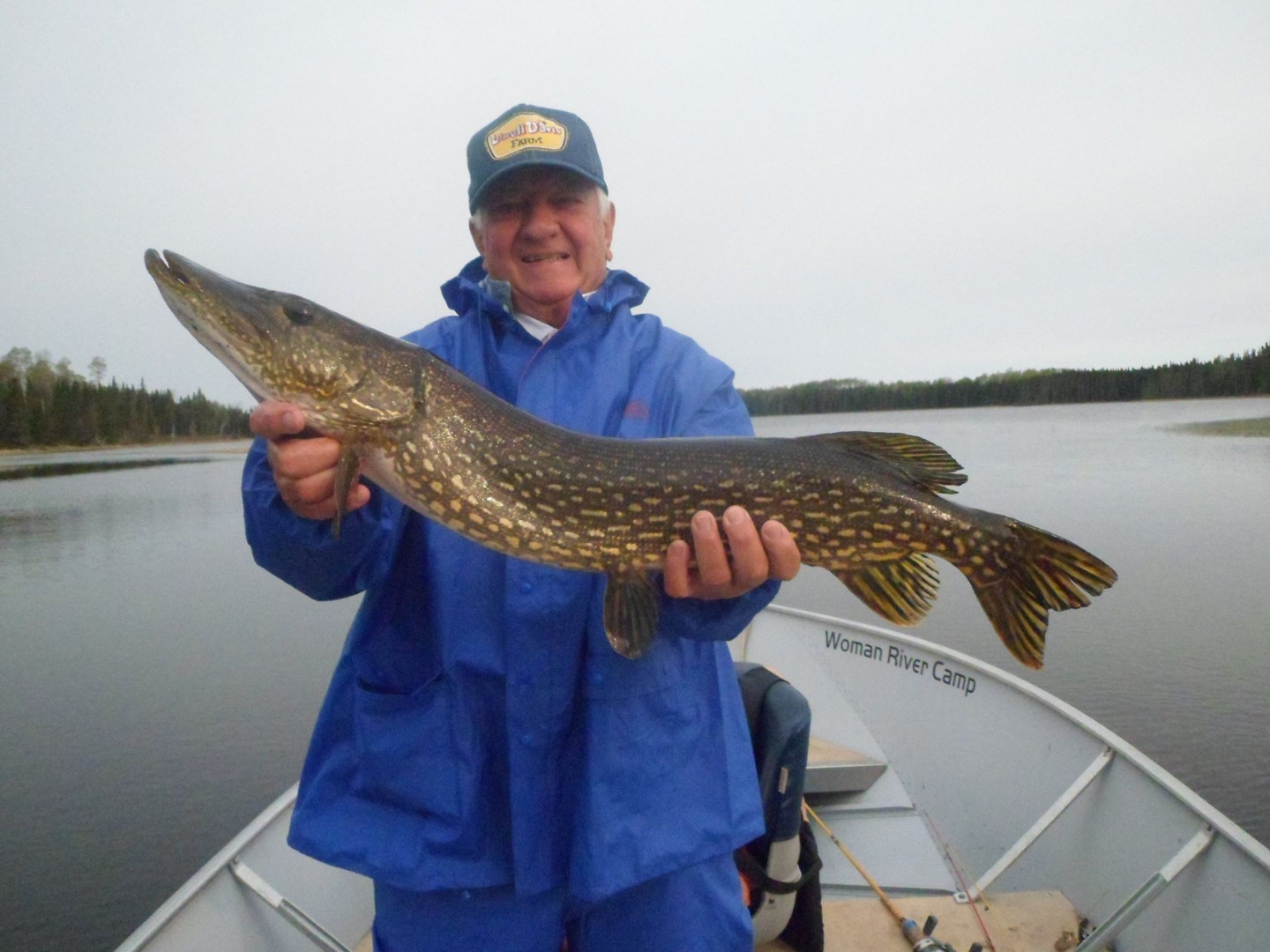 Woman river camp northwest ontario my canada fishing trip for Fishing for northern pike
